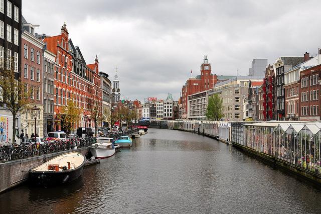 AmsterdamFlowerMarket2